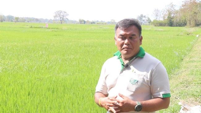 เกษตรกรนครพนม ร่วมวิจัยข้าวเหนียวหอมนาคากับไบโอเทค หวังขับเคลื่อนสู่ตลาด BCG