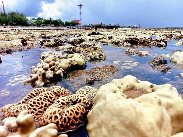 ศรชล.ร่วม ศวทอ.สำรวจปะการังฟอกขาว สร้างความสนใจนักท่องเที่ยว