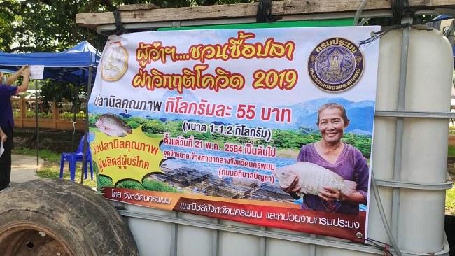 นครพนม ตั้งเต้นท์ขายปลานิลสด ช่วยเหลือเกษตรกรผู้เลี้ยงปลาและสินค้าทางการเกษตรอื่น